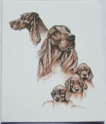 Irish Setter Dog Laura Rogers Pet Notes Notecard Set of 10