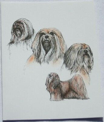 Lhasa Apso Dog Laura Rogers Pet Notes Notecard Set of 10