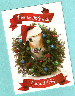 Shiba Inu Christmas Cards Wreath Santa Hat Box of 15 Boughs of Holly