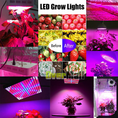 10W-300W LED Grow Light Full Spectrum Hydro Veg Flower Indoor Plant Lamp IR&UV