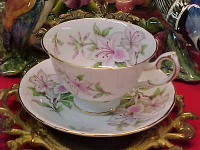 Royal Chelsea Pink & White Flowers Bone China Tea Cup & Saucer England