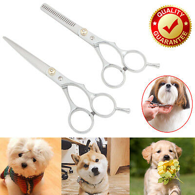 "Professional 6"" Hair Cutting Thinning Scissors Pet Dog Grooming Sharp Shears Kit"
