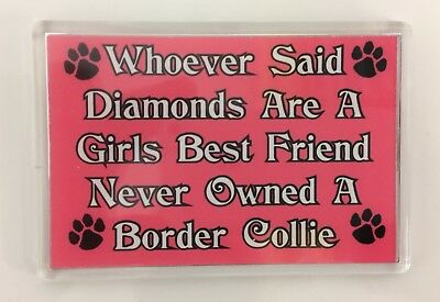 WHOEVER SAID DIAMONDS ARE GIRLS BEST FRIEND NEVER OWNED A BORDER COLLIE Magnet