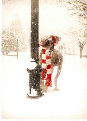 Weimaraner Merwwy Chwithmuth Merry Christmas Cards Box of 14