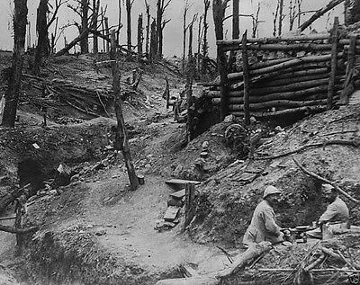 New 8x10 WWI Photo French soldiers in trench at Des Fermes woods Battle of Somme