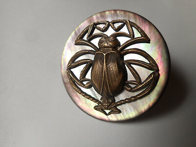 Large Beetle Insect MOP Colorful Pearl Antique Button 1-3/4""