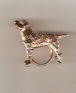 Border Terrier Gold Plated Eyeglass Holder Pin Jewelry