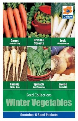 Winter Vegetable Seed Collection 6 in 1 pack contains Carrot, Brussel Sprout, Le