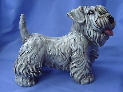 Sealyham Cesky Terrier Dog Italy 8""