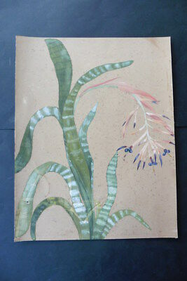 French School Ca. 1900 - Large Size Study Flowering Plant - Watercolor