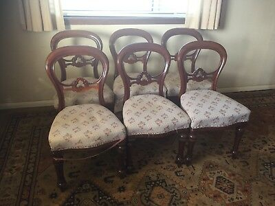Restoration Project - 6 x Antique Mahogany Balloon Back Victorian Dining Chairs