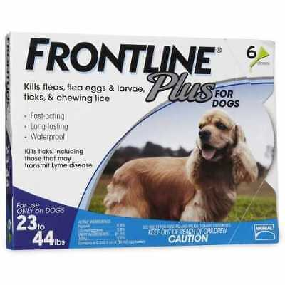 Frontline Plus for Dogs 2344 lbs  BLUE 6 MONTH
