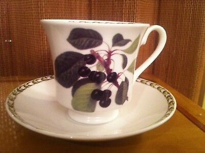 Rosina Queens HOOKER'S FRUIT Made in England -  BLACK CHERRY Cup & Saucer