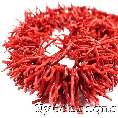 """22mm Cameo 100% Natural Undyed Red Branch Italy Coral Beads 15"""" Strand FREE SHIP"""