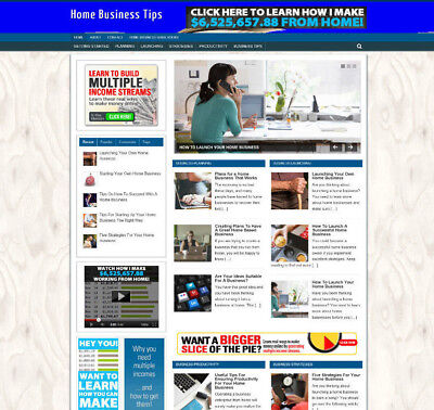 Home Business Advice Uk Affiliate Store Website With Banners - Pro Design