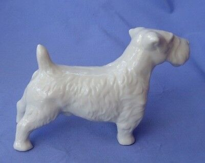 1950 SEALYHAM CESKY terrier dog Germany 6""