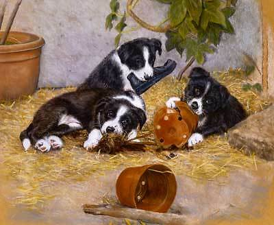 Border Collie Note Card: The Young Gardeners by Debbie Gillingham Pack of 5