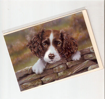 English Springer Spaniel Puppy Notecards Note Cards by Paul Doyle Pack of 5