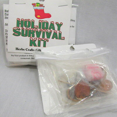 Holiday Survival Kit New Clean Gag Gift Christmas for Everyone Original Unique
