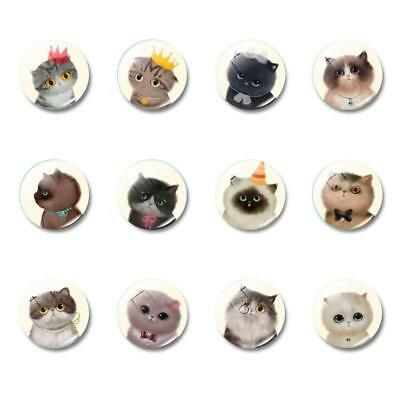1/5/10PCS Cute Cat Glass Fridge Magnet Whiteboard Note Message Decor CA