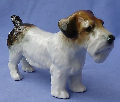 Sealyham Cesky Terrier Ens Germany Dog 5""