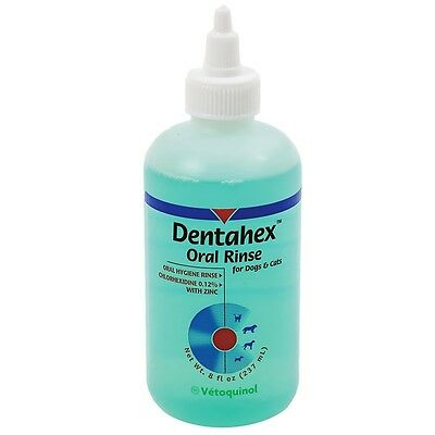Dentahex Oral Rinse by Vet Solutions 8 oz