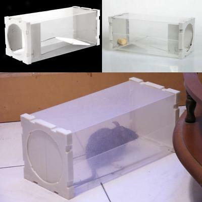 Useful Humane Rat Trap Cage Animal Pest Rodent Mice Mouse Bait Catch