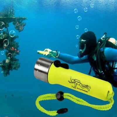 New Professional Diving Flashlight Underwater Torch LED Light Waterproof Lamp