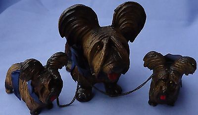 1940 Papillon Skye Silky Terrier Briard Dog Mom & Pups