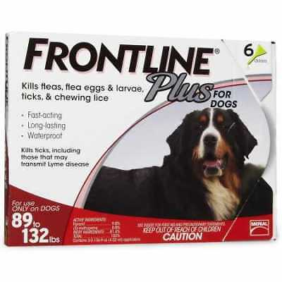 Frontline Plus for Dogs 89132 lbs  RED 6 MONTH