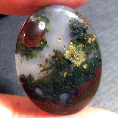 20ct AAA NATURAL Green Brown RED GARDEN MOSS AGATE ~3-dimensional PICTURE~