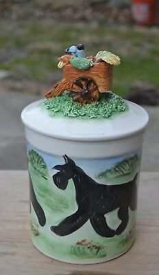 Giant Schnauzer.  .Handsculpted ceramic cookie jar . OOAK .