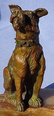 Antique Bronze Schnauzer  Fox Terrier Dog France Merite