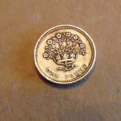 £1 One Pound Coin 1991 Irish Flax