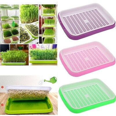 Bud Seedling Starting Trays Double Layer Bean Sprouts Plate Seed Hydroponic Tray