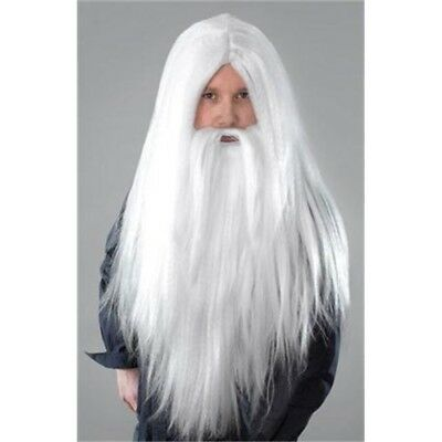 White Men's Long Wizard Wig & Beard - Fancy Dress Merlin Halloween Santa