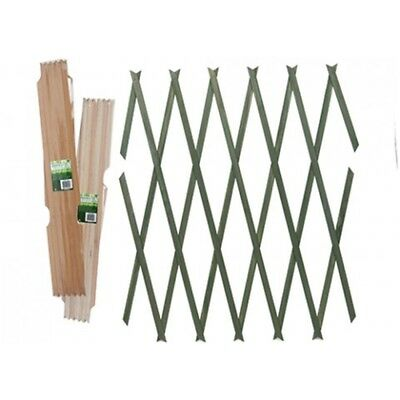 150cm x 30cm Brass Pinned Wooden Trellis - 3 Assorted Designs. - Garden