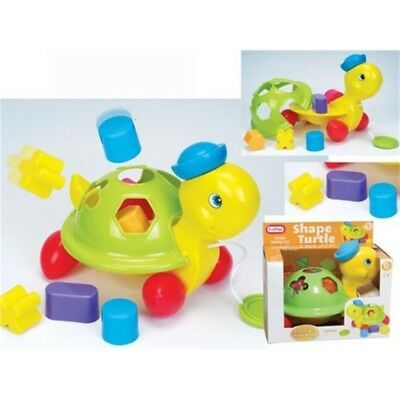 Fun Time Pull Along Shape Turtle - Toy Fun Baby Sorter