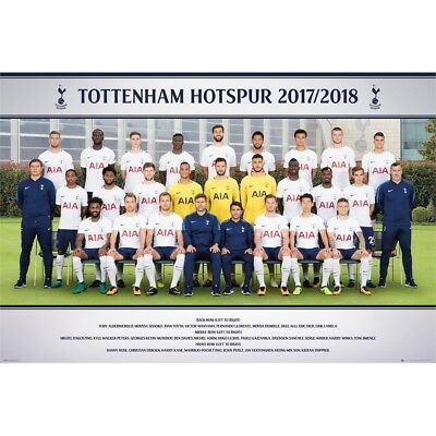 "Gb Eye Tottenham, Team Photo 17/18"" Maxi Poster, Wood, Various, 65 x 3.5 x 3.5"