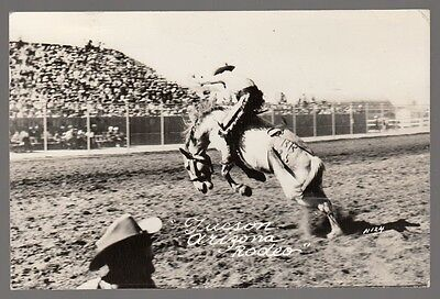 [59481] 1952 Real Photo Postcard Cowboy On Horse At A Tucson, Arizona Rodeo