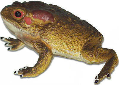 AAA 12815 Large Toad Frog  Realistic Toy Model Figurine Replica Prop - NIP
