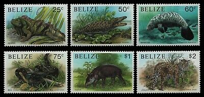 Belize 1991 - Mi-Nr. 1062-1067 ** - MNH - Wildtiere / Wild animals