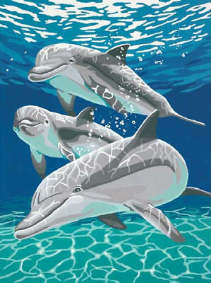 Paint Works Sunlit Pals Dolphins Painting By Numbers Kit