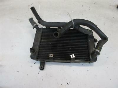 3. Suzuki Burgman on 250 Radiator Cooler Engine Cooling Radiator
