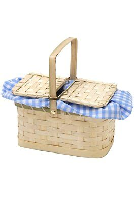 Blue and White Gingham Basket Costume Accessory