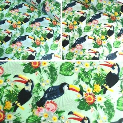 Polycotton Fabric Toucan Jungle Tropical Animal
