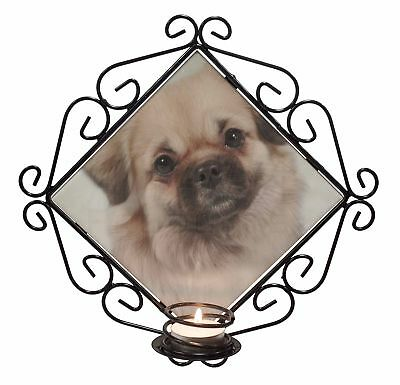 Tibetan Spaniel Dog Wrought Iron T-light Candle Holder Gift, AD-TS1CH