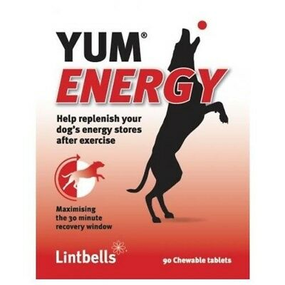 Lintbells Yum Energy For Dogs - 90 Tablets