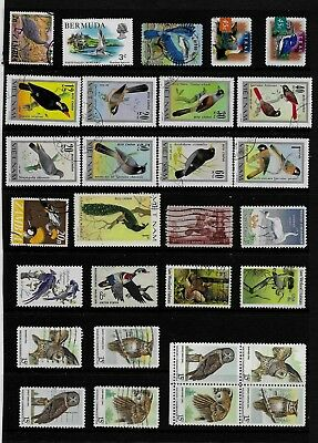 BIRDS Thematic STAMP Collection majority USA VETNAM Ref:TS562