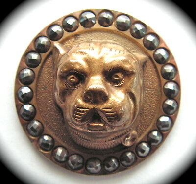 Antique Button ~ Large Brass High Relief Dog Head w Faceted Steel Border